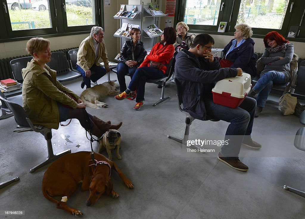 Pet owners wait with their animals in the waiting room to see a veterinarian at the Dueppel animal clinic on April 29, 2013 in Berlin, Germany. The Dueppel clinic consists of two separate facilities, one for horses and other large animals, the second for small animals. The Dueppel clinic belongs to the Freie Universitaet Berlin university and is one of five university veterinary clinics in Germany. The clinic for small animals is now the most modern in Germany.