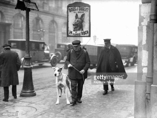 Pet Shop at 14 Rue Saint Roch with sign 'Dogs of Quality' in January 1929 in Paris France