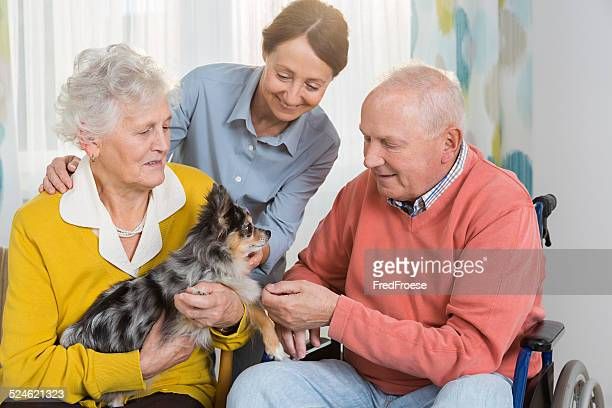 Pet Therapy – Senior couple with little dog