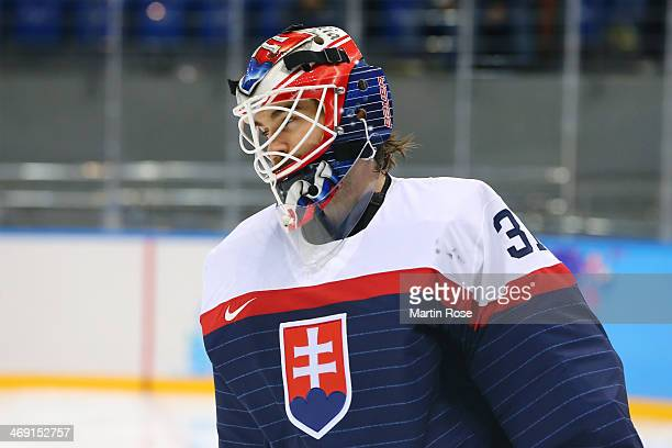Peter Budaj of Slovakia looks on against the United States during the Men's Ice Hockey Preliminary Round Group A game on day six of the Sochi 2014...