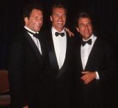 Peter Guber Arnold Schwarzenegger and Jon Peters during Simon Wiesenthal Center's National Leadership Award Presented to Arnold Schwarzenegger at...