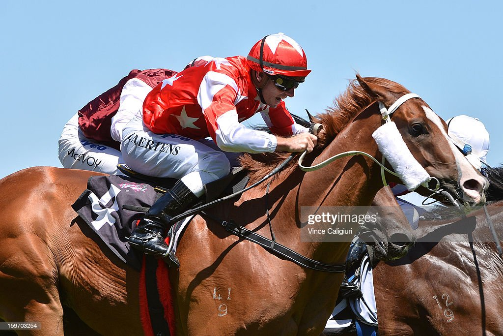 Peter Mertens riding Red Inca wins the Seascay Handicap during Melbourne racing at Flemington Racecourse on January 19, 2013 in Melbourne, Australia.