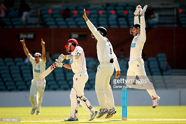 Peter Nevill of the Blues celebrates after taking a catch to dismiss Tom Cooper of the Redbacks during day one of the Sheffield Shield match between...