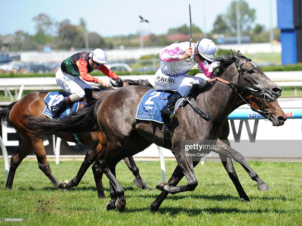 Peter Robl riding Arabian Gold wins the New Zealand Bloodstock Ethereal Stakes during Caulfield Cup day at Caulfield Racecourse on October 19, 2013 in Melbourne, Australia.