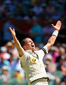 Peter Siddle of Australia appeals for an lbw decision during day three of the Third Test match between Australia and New Zealand at Adelaide Oval on...