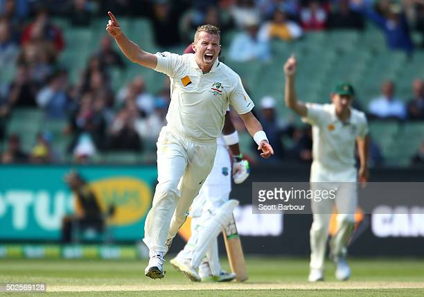 Peter Siddle of Australia celebrates after dismissing Jason Holder of the West Indies during day two of the Second Test match between Australia and...