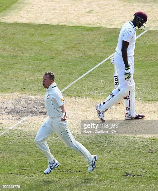 Peter Siddle of Australia celebrates after taking the wicket of Jason Holder of the West Indies during day two of the Second Test match between...