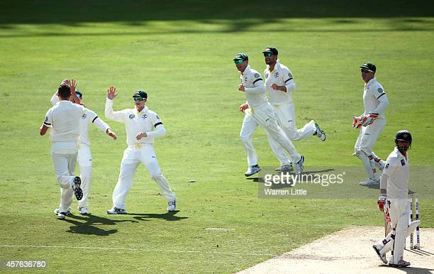 Peter Siddle of Australia takes the wicket of Ahmed Shehzad of Pakistan during Day One of the First Test between Pakistan and Australia at Dubai...