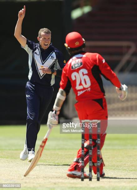 Peter Siddle of the Bushrangers celebrates taking the wicket of Tom Cooper of the Redbacks during the JLT One Day Cup match between Victoria and...