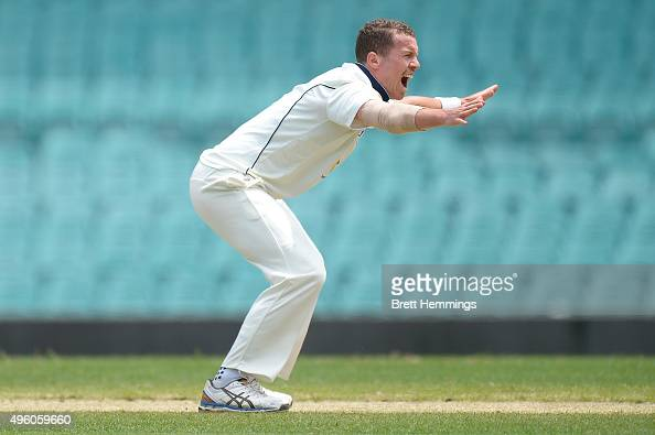 Peter Siddle of Victoria unsuccessfully appeals for the LBW wicket of Kurtis Patterson of NSW during day two of the Sheffield Shield match between...