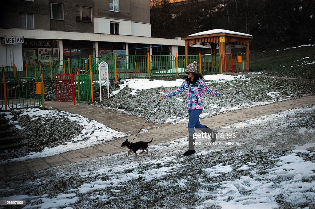 Petia Kotcheva, 24, strolls her dog, a few days before her departure from Bulgaria on December 20, 2013 in Gabrovo, about 200km east of capital Sofia. Petia decided to quit university to settle in Amsterdam and work as a waitress in a club. 'It's worthless to get a diploma that leads only to unemployment or a salary of 450 leva a month (US $315)''. On January 1, nine countries including Britain, France and Germany still imposing restrictions on Bulgarian and Romanian workers will lift them. AFP PHOTO / NIKOLAY DOYCHINOV