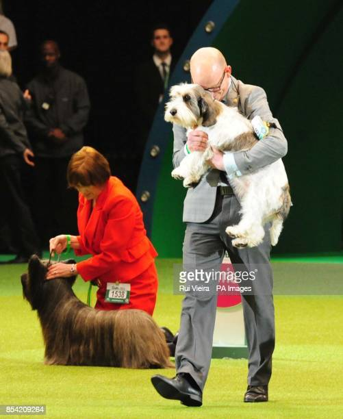 A Petit Basset Griffon Vendeen named Jilly with owner Gavin Robertson from Wallingford Oxfordshire after being named as Best in Show at Crufts 2013...