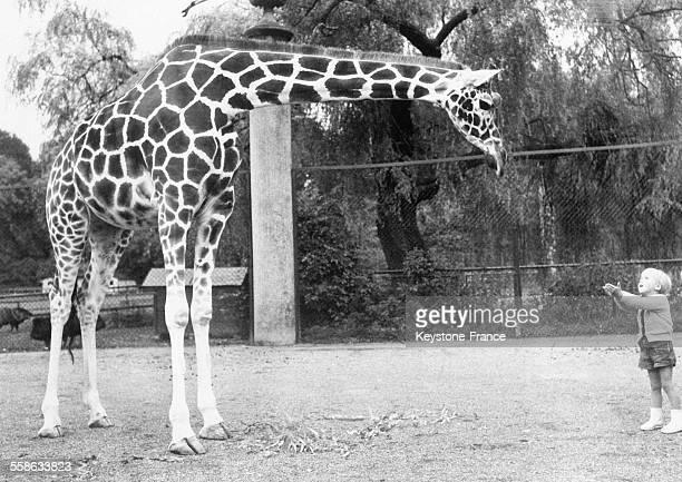 Petit garçon et girafe au zoo de Munich Allemagne en septembre 1965