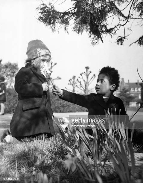 Petit garçon offrant des fleurs à son amoureuse dans le parc de Sidcup à Londres RoyaumeUni