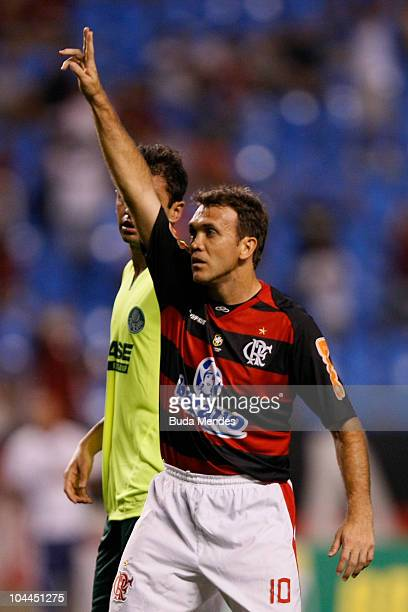Petkovic of Flamengo celebrates a scored goal during a match against Palmeiras as part of the Serie A at Engenhao Stadium on September 25 2010 in Rio...