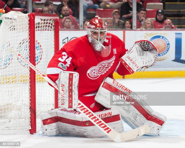 Petr Mrazek of the Detroit Red Wings follows the play during an NHL game against the Columbus Blue Jackets at Joe Louis Arena on February 7 2017 in...