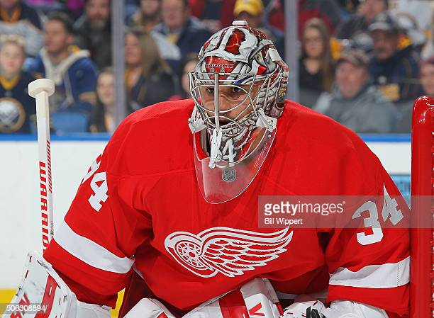 Petr Mrazek of the Detroit Red Wings keeps an eye on the play during an NHL game against the Buffalo Sabres on January 22 2016 at the First Niagara...