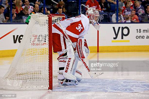 Petr Mrazek of the Detroit Red Wings readies himself prior to the start of the second period during the game against the Columbus Blue Jackets on...