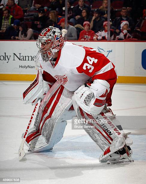 Petr Mrazek of the Detroit Red Wings skates against the New Jersey Devils at the Prudential Center on November 28 2014 in Newark New Jersey The Red...