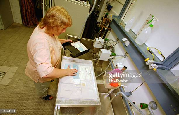 Petra Guist washes decaying index cards in a magnesium calcium carbonate solution August 21 2001 at the facility where the former East German...
