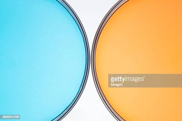 Petri Dish Comparison
