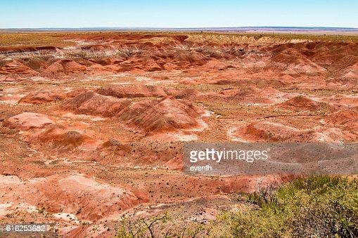 Petrified Forest National Park, Arizona, United States : Foto de stock