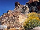 Petroglyphs, Lake Mead National Recreation Area, Nevada. USA.