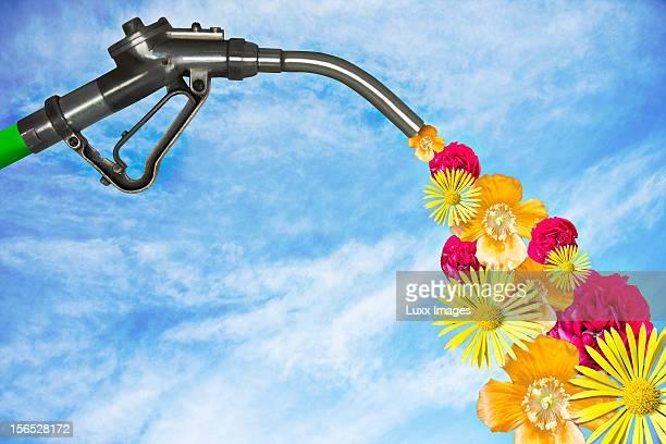 Petrol pump dispersing flowers instead of petrol