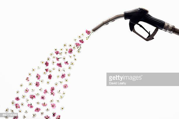 A petrol pump releasing flowers