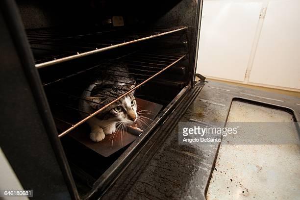Herring Heating And Air