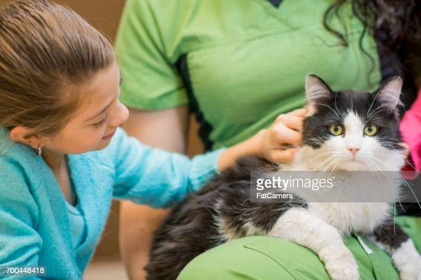 Petting The Cat