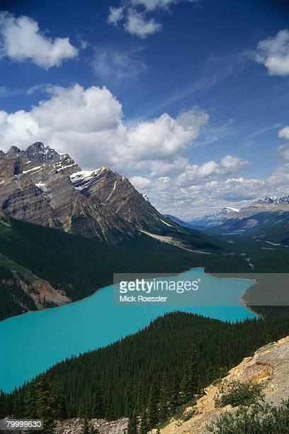 Peyto Lake and Canadian Rockies
