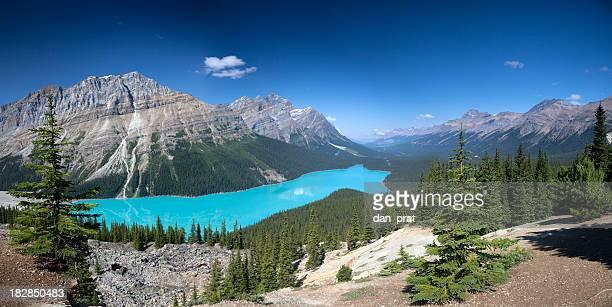 Peyto Lake Panorama, Banff National Park