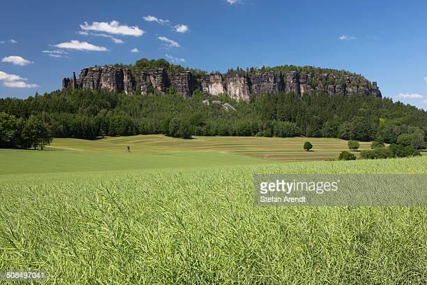 Pfaffenstein low table mountain, Elbe Sandstone Mountains, Saxony, Germany, Europe