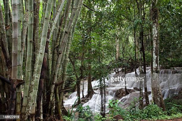 Pha Tad waterfall in Sri Nakharin National Park, near Kanchanaburi.