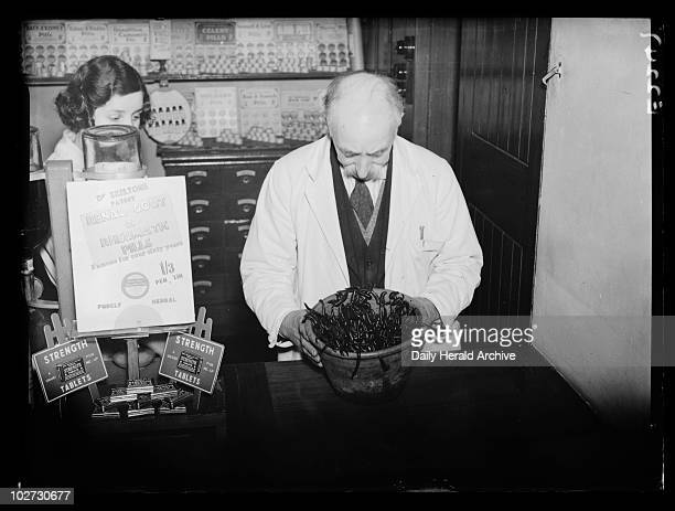 Pharmacist holding a bowl of leeches 23 January 1935 Pharmacist at Potter Clarks in Farringdon Street London holding a large bowl teeming with...