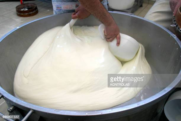 A phase of the production of buffalo cheese inside the factory