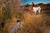 Phesant hunting with a bird dog.