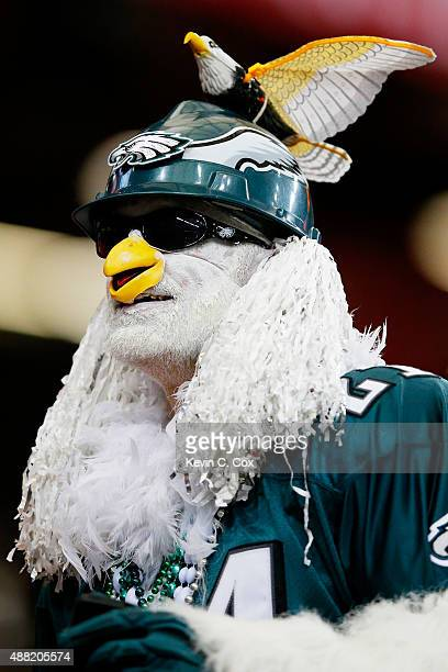 Philadelphia Eagles fan in the stands prior to the game against the Atlanta Falcons at the Georgia Dome on September 14 2015 in Atlanta Georgia