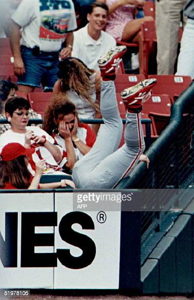 Philadelphia Phillies left fielder Pete Incaviglia falls into the StLouis crowd while chasing a foul ball hit by StLouis Cardinal Ray Lankford in the...