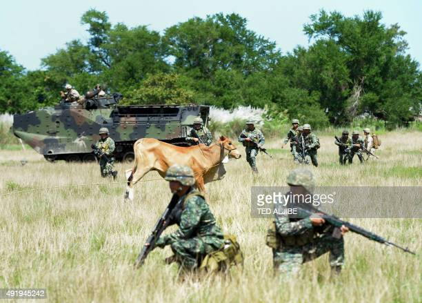 Philippine Marines take position near a cow while their US counterparts supervise during a live fire exercise as part of their annual joint naval...