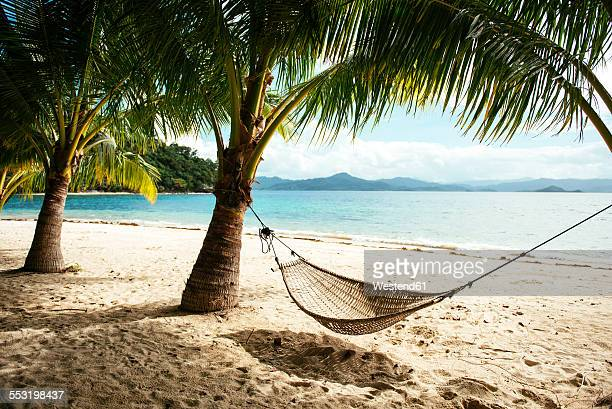 Philippines, Palawan, hammock and palms on a beach near El Nido