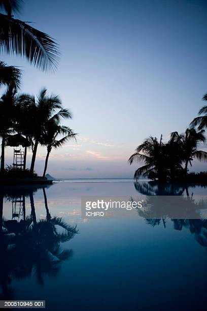 Philippines, Visayan Islands, Cebu, palm trees reflecting in pool