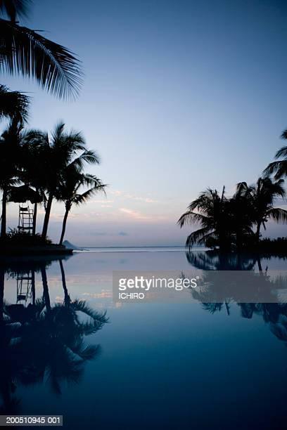Philippines, Visayan Islands, Cebu, palm trees reflecting in pool