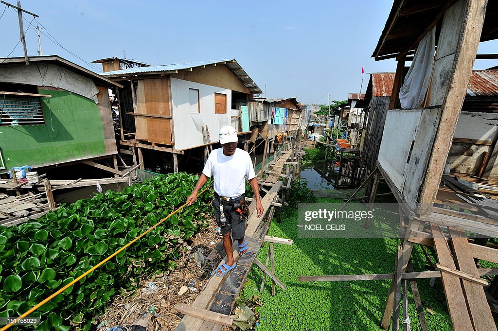 STORY 'Philippines-Flood-Poverty' by Cecile Morella (FILES) on this photo taken on June 11, 2010, a man walks on a flimsy wooden footbridges to cross to his shanty house made of plywood and metal sheets sitting precariously on thin stilts above the garbage-flecked water hyacinth beds on the shore of Laguna Lake in Manila. Hundreds of thousands of slum dwellers persist in living in dangerous areas in the Philippine's capital despite deadly floods that claimed hundreds of lives last year. A month into the tropical nation's annual rainy season entire communities that were hit hard by the September 2009 disaster are vigorously resisting government efforts to move them to safer.