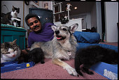 Phillip Gonzalez lies with his dog Ginny and a group of rescued cats Ginny a former pound dog leads her owner around Long Island New York and shows...