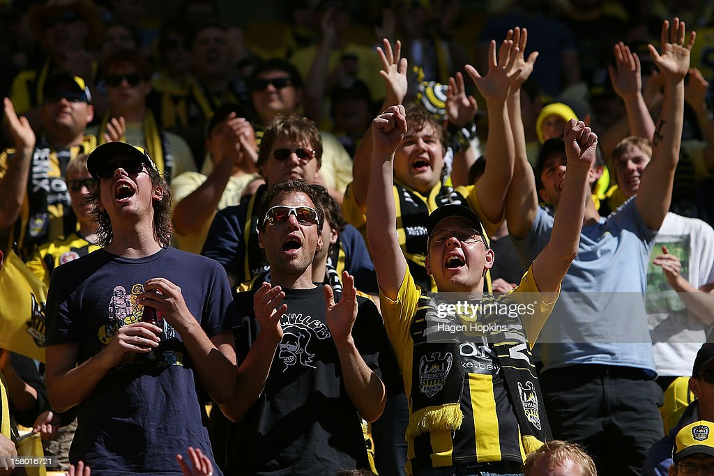 Phoenix fans show their support during the round 10 A-League match between Wellington Phoenix and Sydney FC at Westpac Stadium on December 9, 2012 in Wellington, New Zealand.