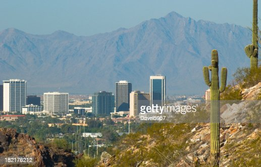Phoenix skyline and cactus