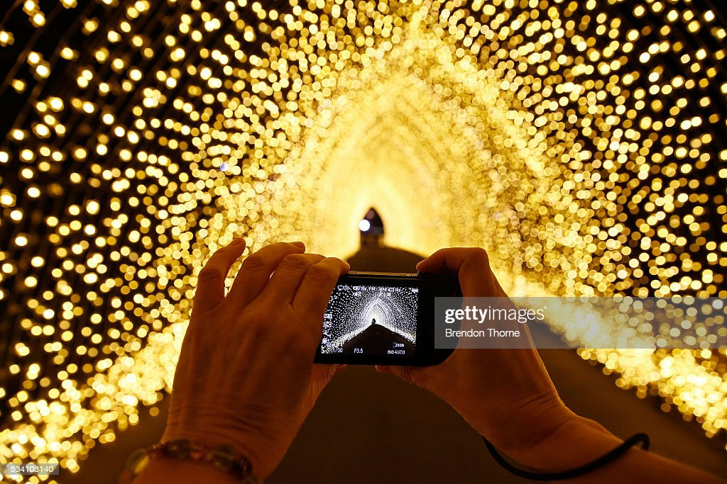 A photo is taken inside the 'Cathedral of Light' at The Royal Botanic Gardens on May 25, 2016 in Sydney, Australia. Held annually, Vivid Sydney is the world's largest festival of light, music and ideas.