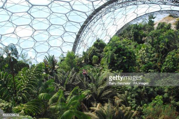 Photo Jodie Talbot in the tropical bio dome at the Eden Project